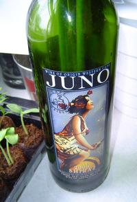 Junobottle