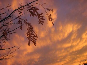 Sunsetstory5